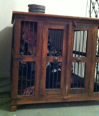 I love being in a cage! Fun fantasy potential...